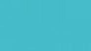 Seed Physio Logo